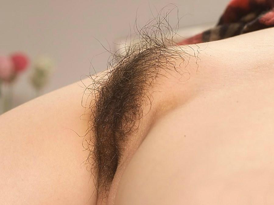 порно фото писек сзади на телефон
