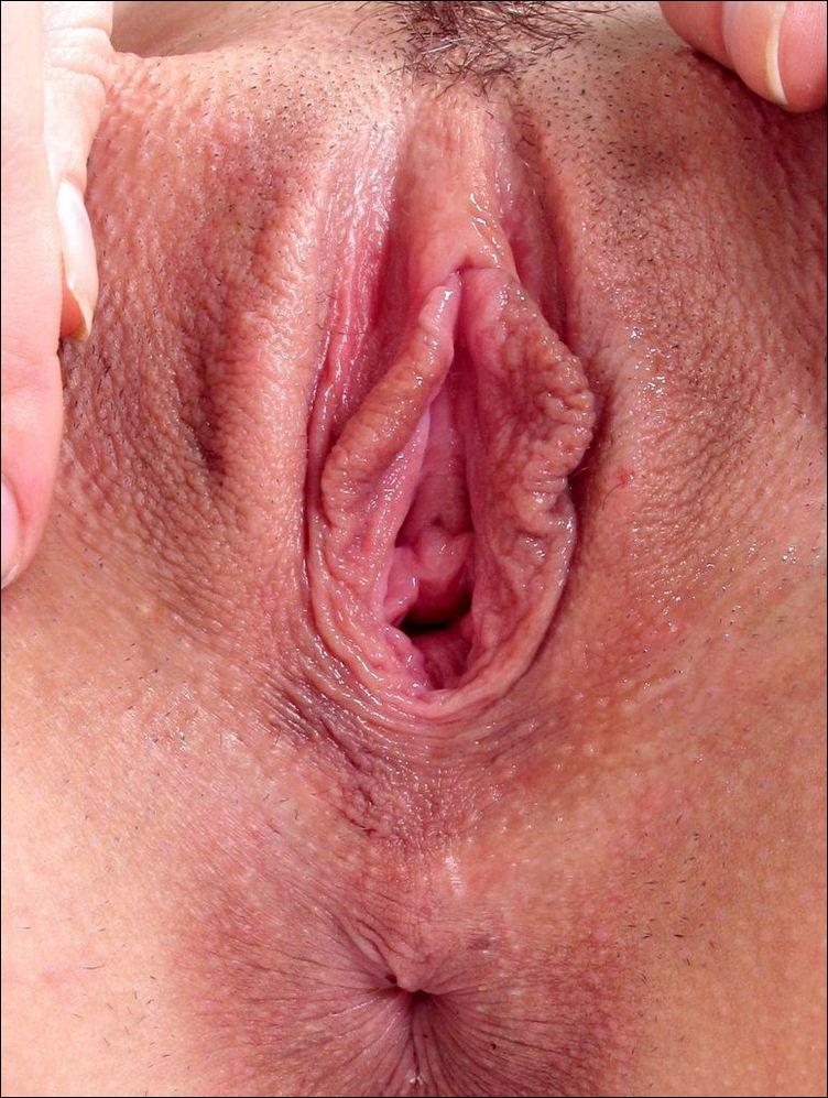 фото галерея вагины