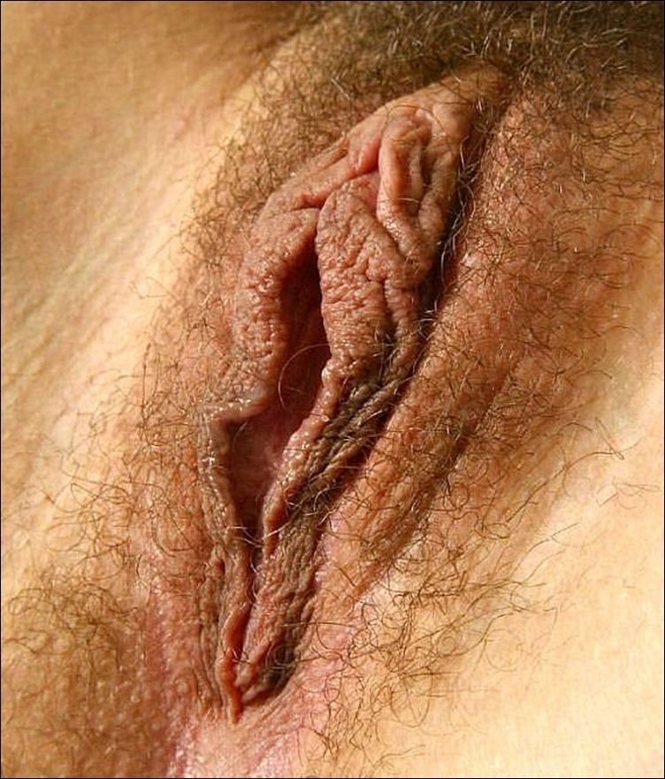 Короткие порно видео ролики  Porno